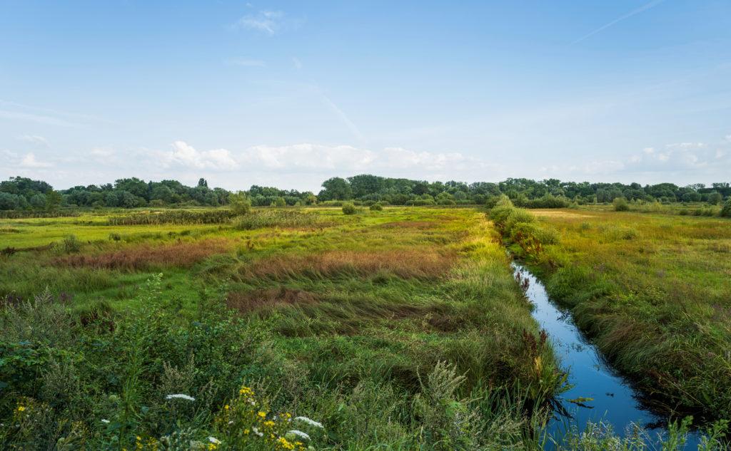 Natuurreservaat bourgoyen-ossemeersen